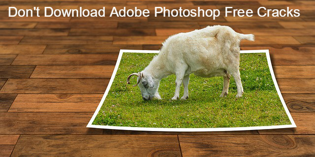 Dont Download Adobe Photoshop Free Cracks